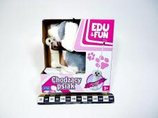 CHODZACY PIES EDU&FUN SZARY...